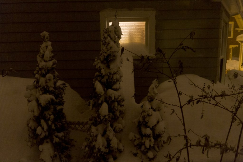 winter-2015-8175.jpg