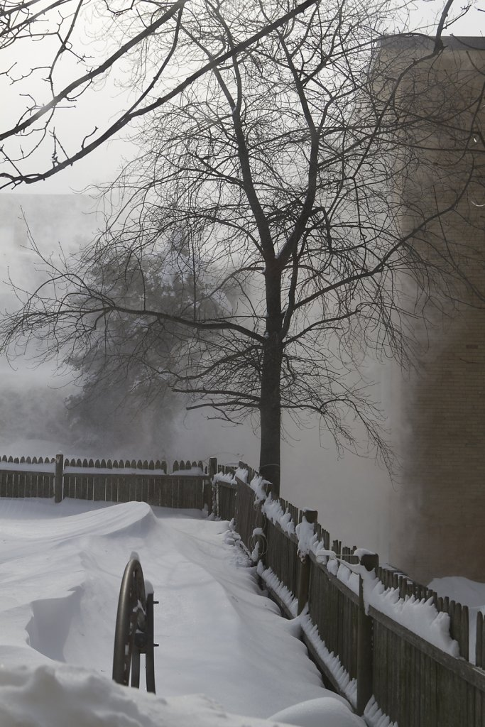 winter-2015-8298.jpg
