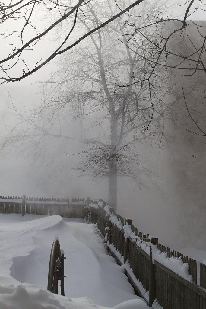 winter-2015-8299.jpg
