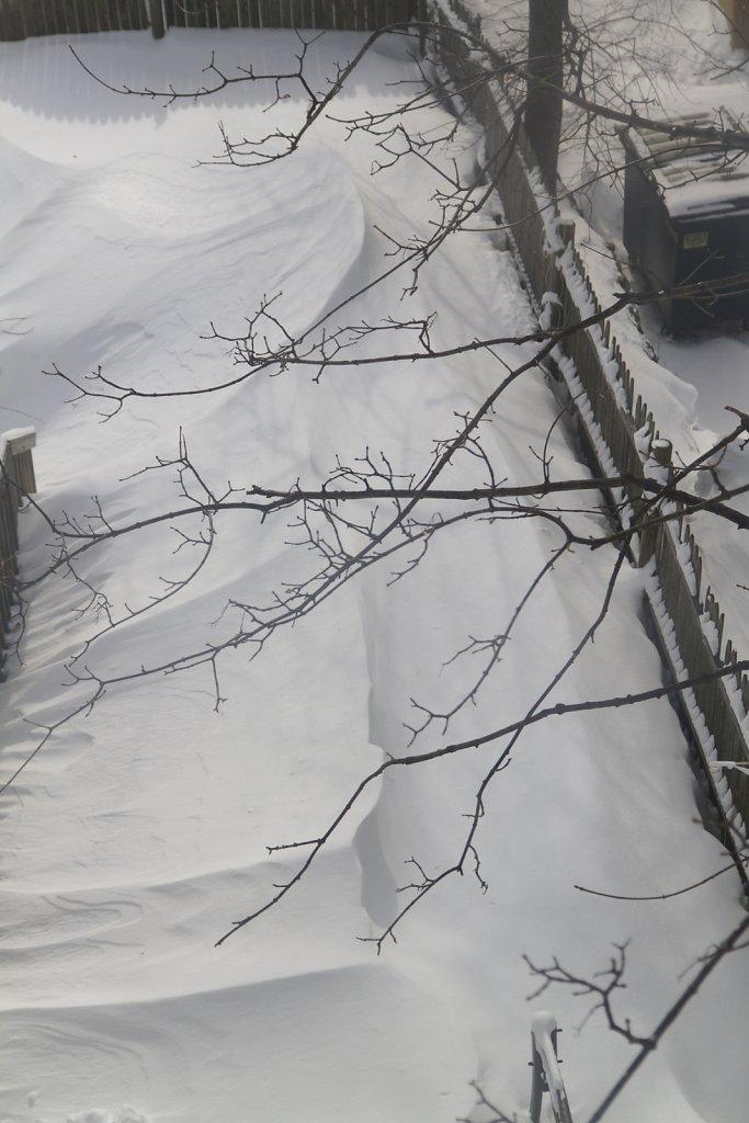 winter-2015-8323.jpg